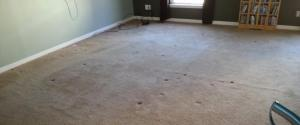 carpet stretching after stretch 2