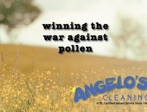 Pollen Allergy Relief in the Home