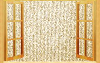 carpet cleaning for apartment rentals