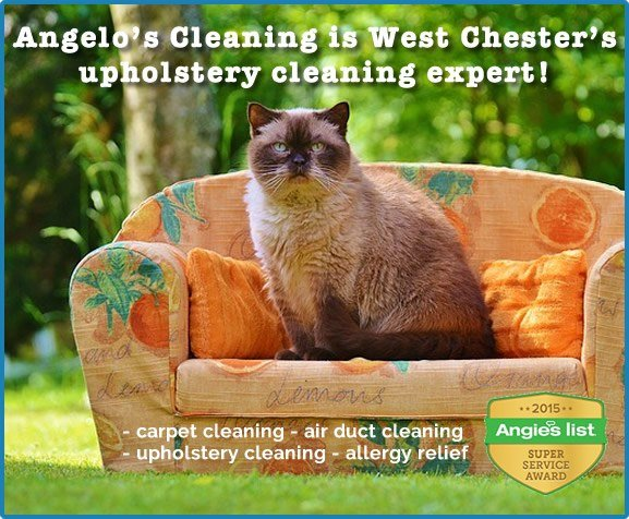 west chester pa upholstery cleaning