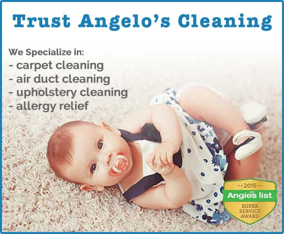 carpet cleaning service phoenixville