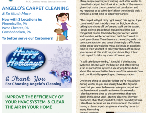 Angelo's Cleaning 2017 Winter Newsletter