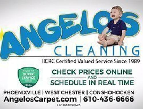 All of our Cleaning Services Video