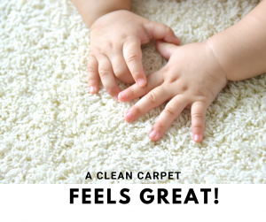 kid friendly carpet cleaning